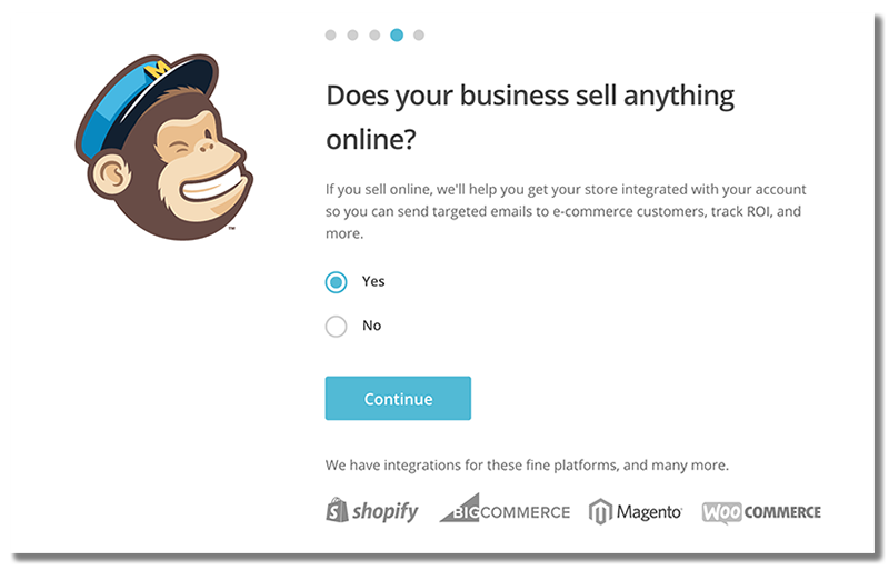 Setup Screen for MailChimp for Email Marketing Services
