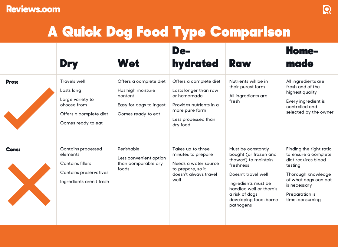 Bad Dog Food Brands List