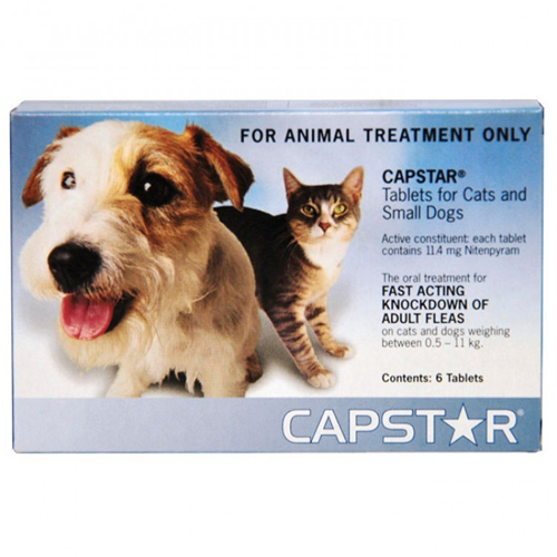 Best Tick Medicine For Dogs In India