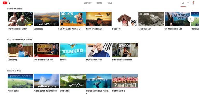 2019 YouTube TV Review   Reviews com