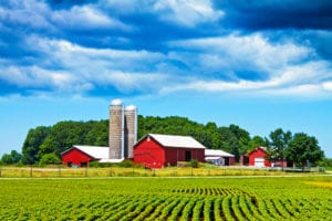 Farmers Homeowners Insurance Review