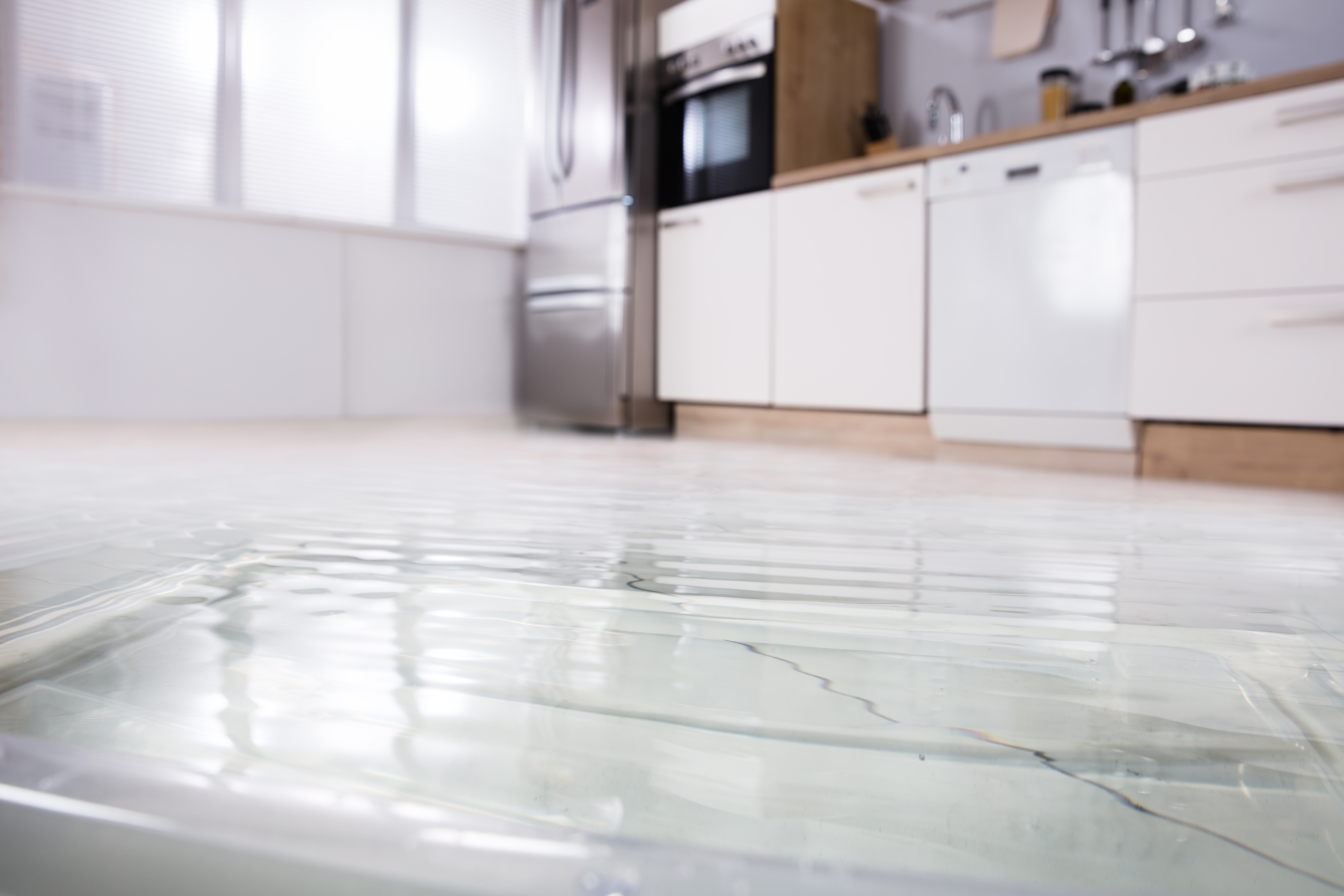 What Homeowners Need To Know About Water Damage Reviews