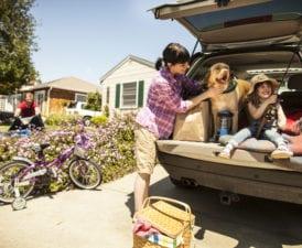 American Family Auto Insurance